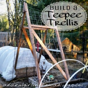 Building A Teepee Trellis For Raised Beds