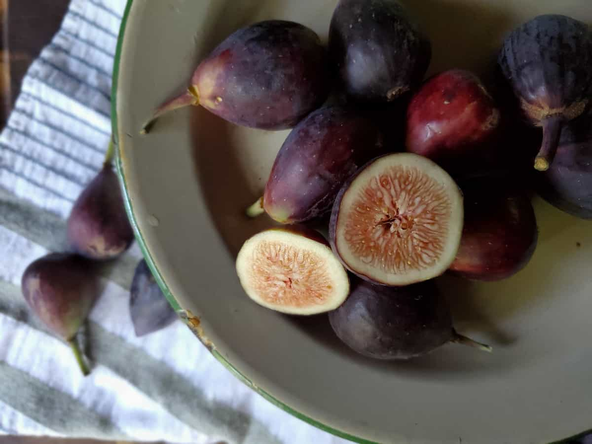 canning figs