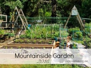 Mountainside Gardening – 2016