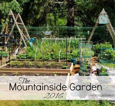 Mountainside Gardening – 2016