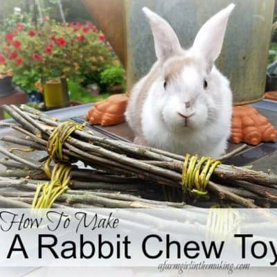 How To Make A Rabbit Chew Toy