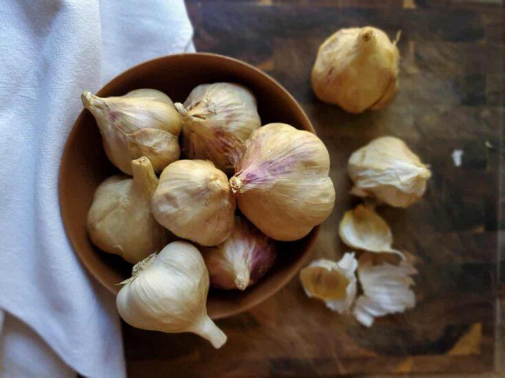 Preserving Smoked Garlic Bulbs