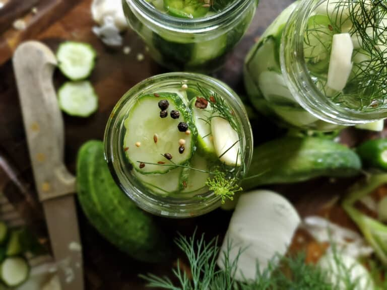 easy refrigerated dill pickles