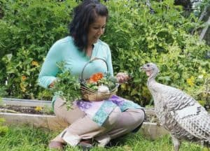 The Truth About Raising Turkeys