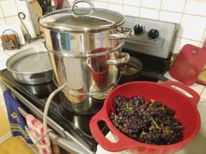 how to use a steam juicer for making juice, jelly and fruit leather
