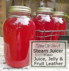How to use a steam juicer to make juice, jelly and fruit leather