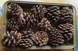 diy naturally scented pinecones