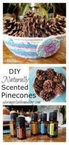 diy naturally scented pinecones