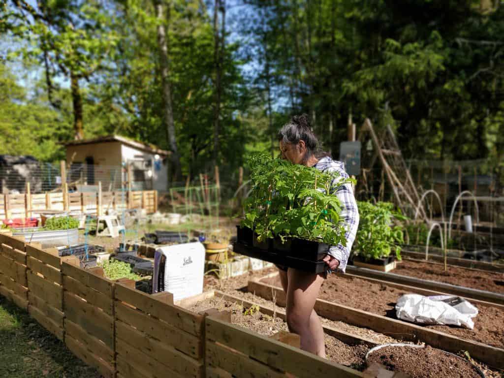 unique raised garden beds