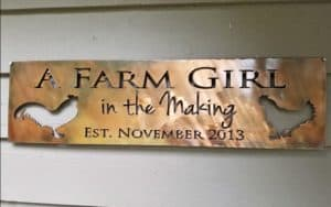 the making of a farm girl in the making