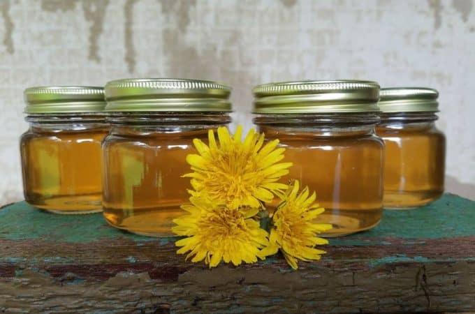 canning dandelion flower jelly