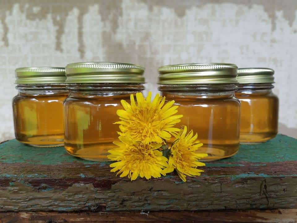 Canning Dandelion Flower Jelly – Perfect for the Beginning Canner
