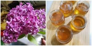 Lilac Flower Jelly – A delightful floral taste