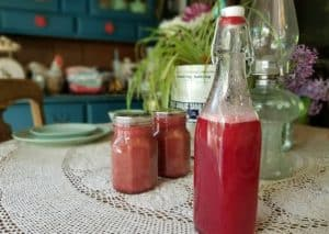 Rhubarb Simple Syrup – a delicious way to preserve rhubarb