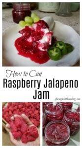 raspberry jalapeno jam - a bite with every bite