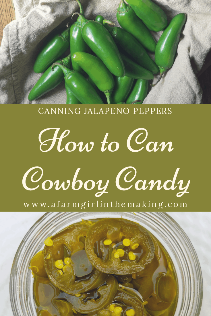 Preserving jalapeno pepper is easy to do. Why not preserve it by putting up Cowboy Candy? This candied jalapeno is a perfect combination of sweet and spicy.