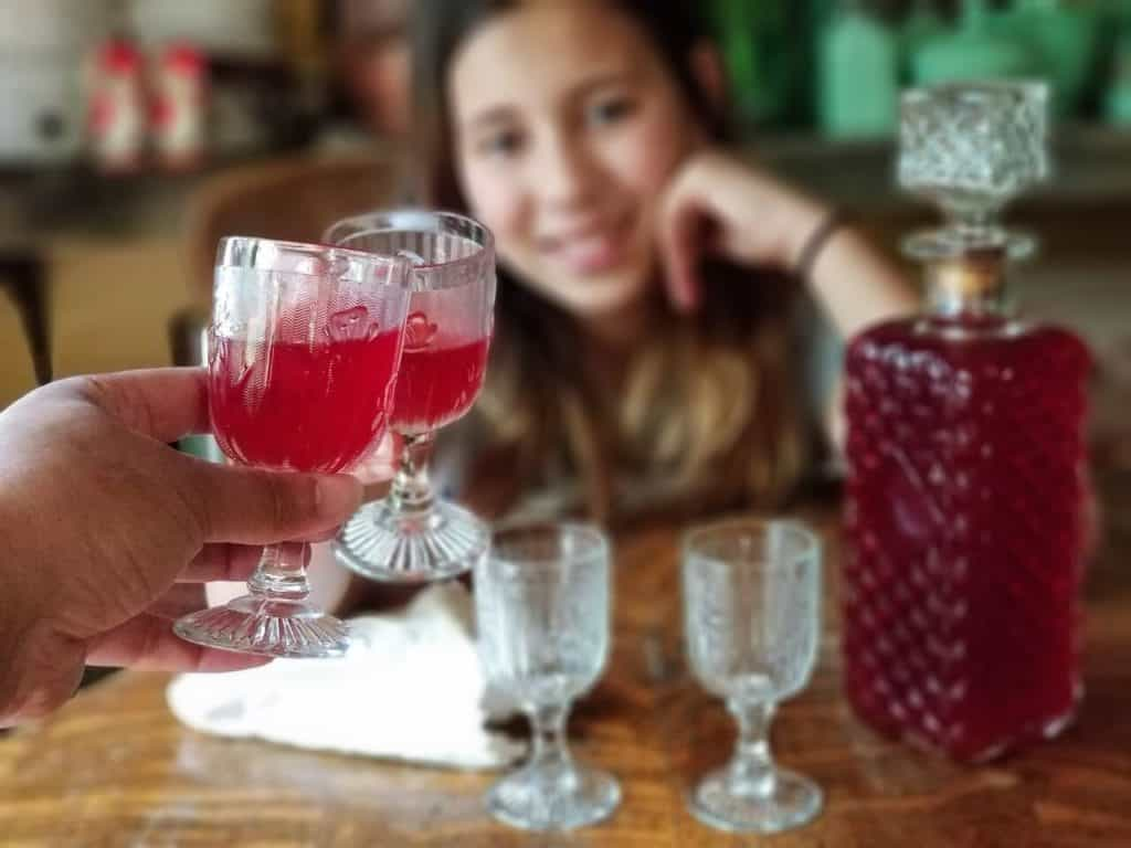 An Easy to Make Kid Friendly Raspberry Cordial – Bringing Kids into the Kitchen to Preserve the Harvest