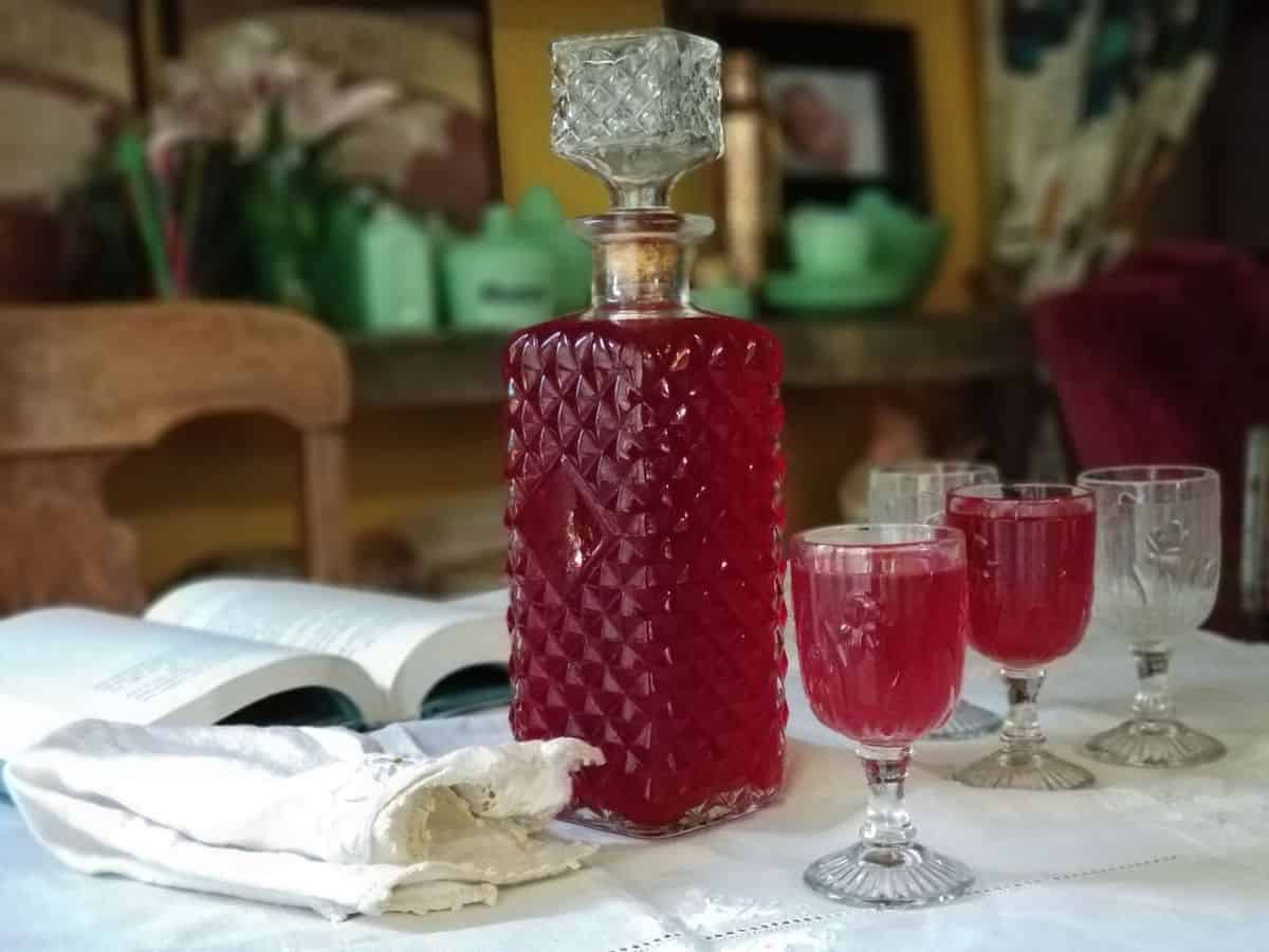 Easy to Make Kid Friendly Raspberry Cordial - Bringing Kids into the Kitchen to Preserve the Harvest