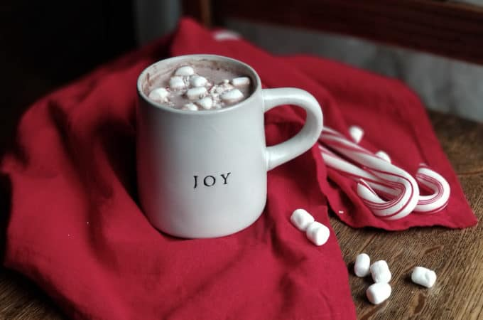 Quick and Easy Homemade Hot Chocolate Mix