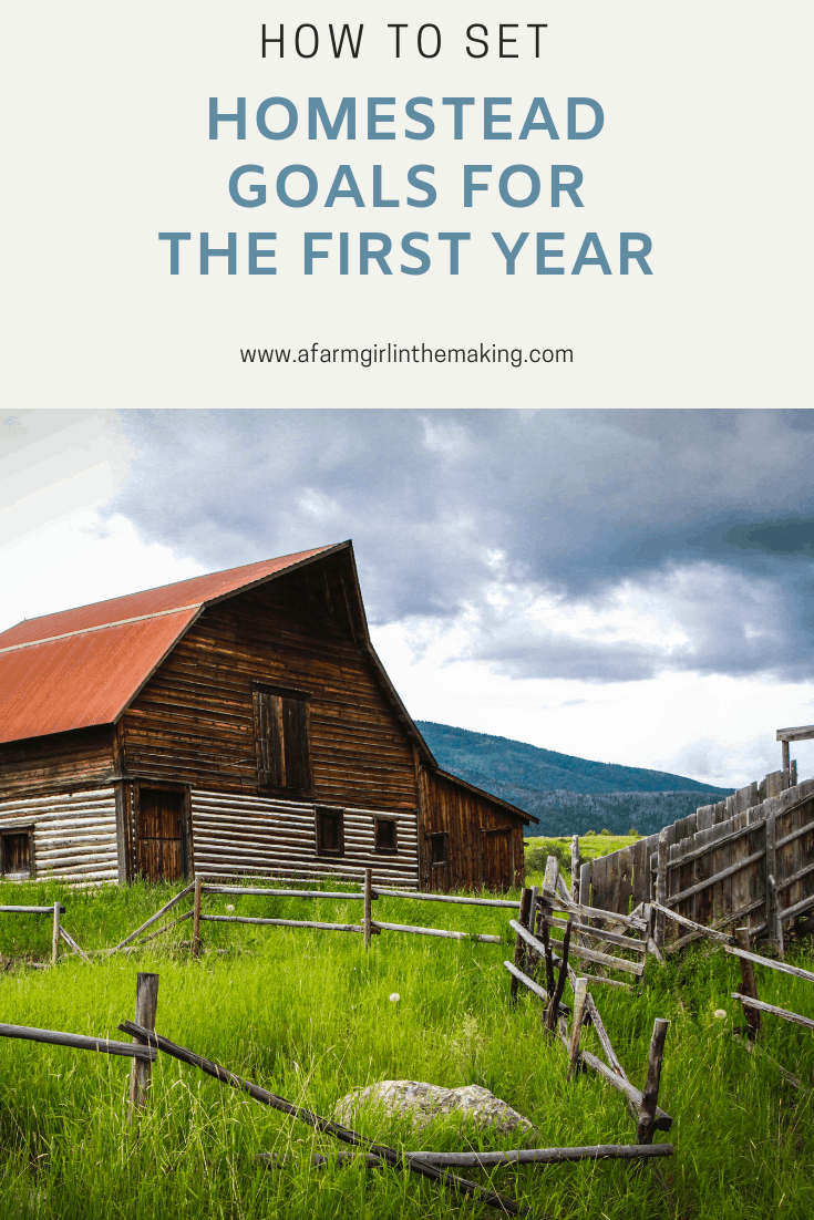 Setting Homestead Goals for the First Year