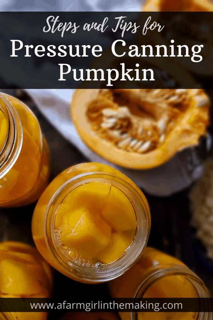pumpkin puree recipes can be enjoyed throughout the year with home canned pumpkin