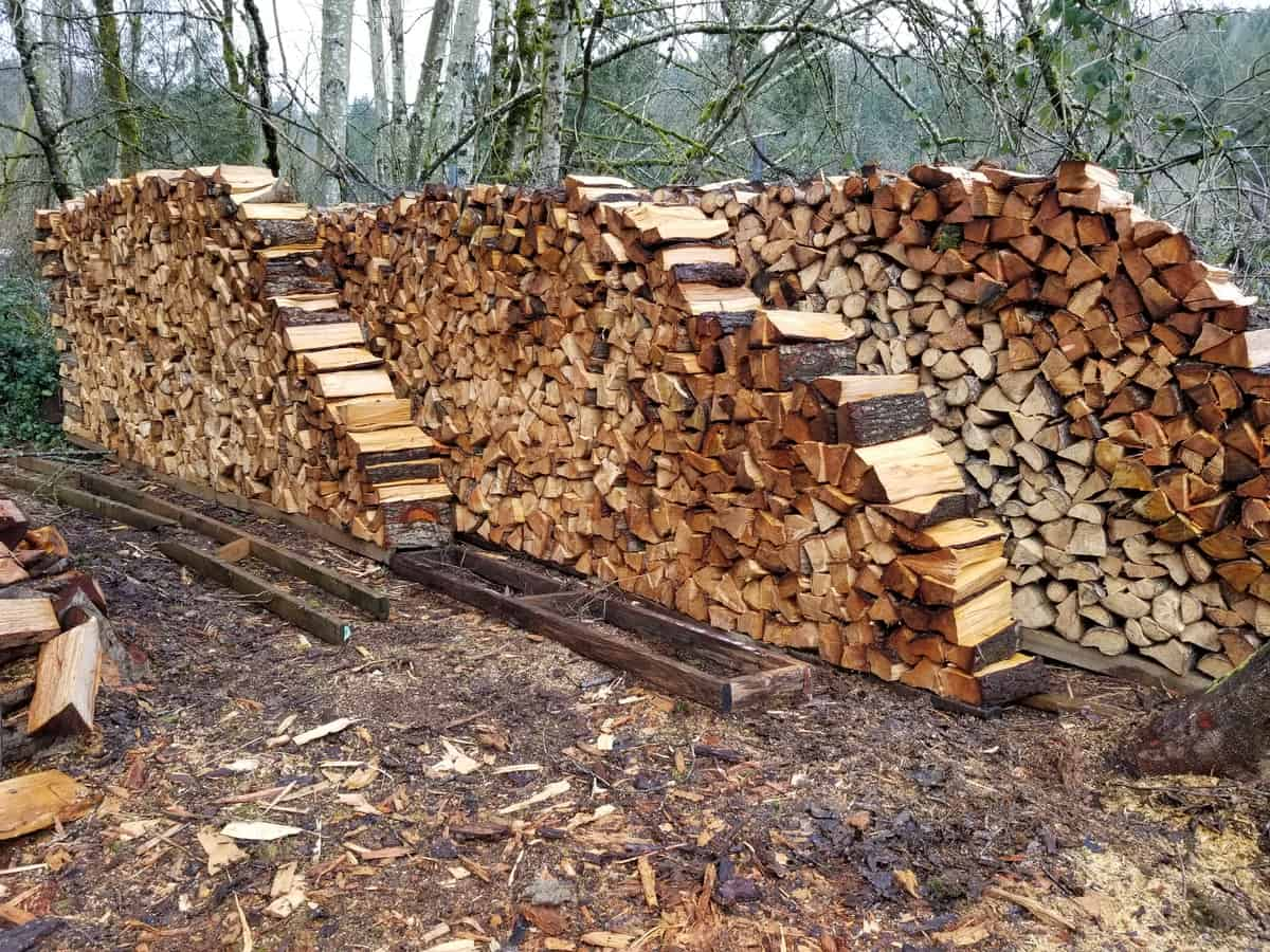 best firewood for a wood stove