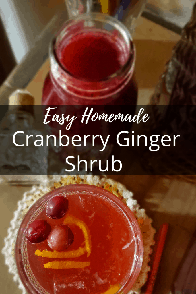 cranberry ginger shrub