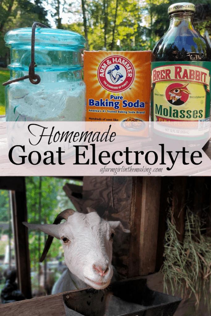 utilize a homemade goat electrolyte as a goat diarrhea treatment