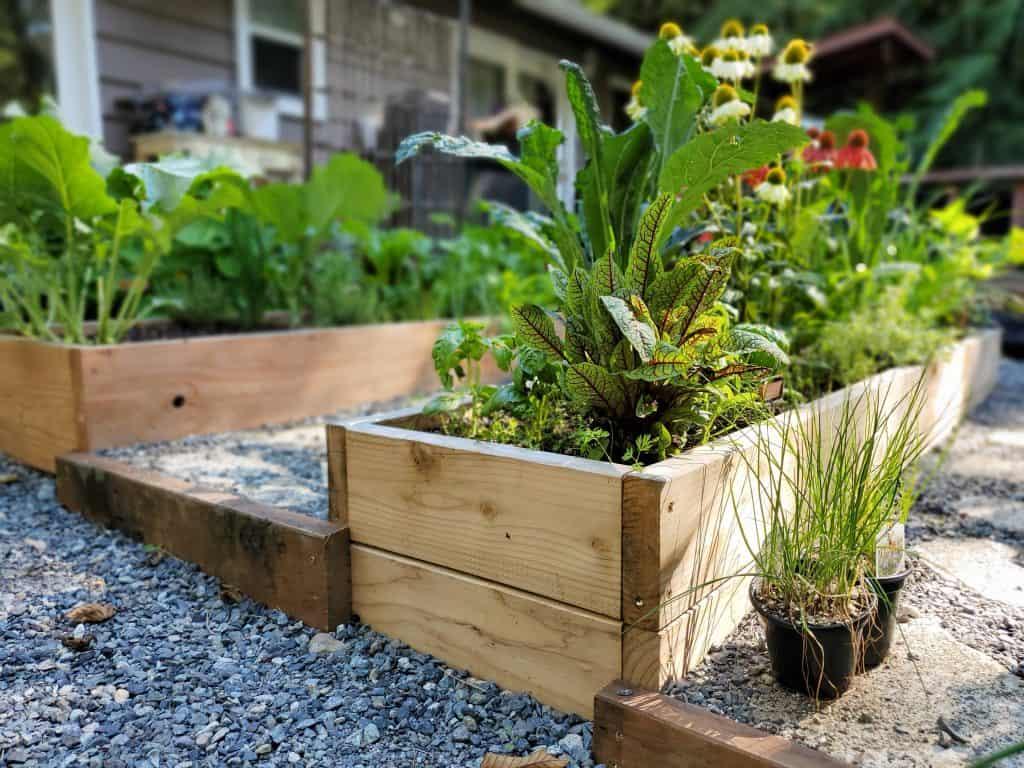 designing a potager garden