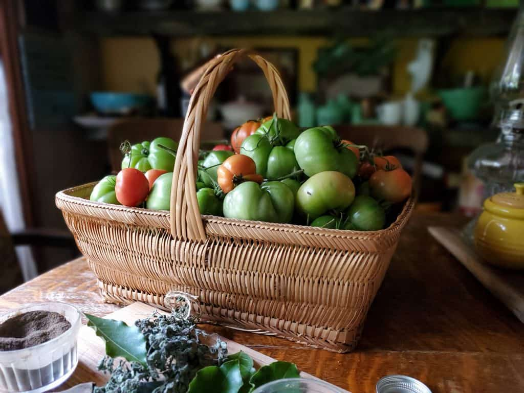preserving this basket of green tomatoes by canning pomodori verdi