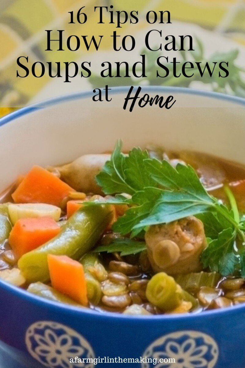 Pinterest pin image for how to can soup and stew.